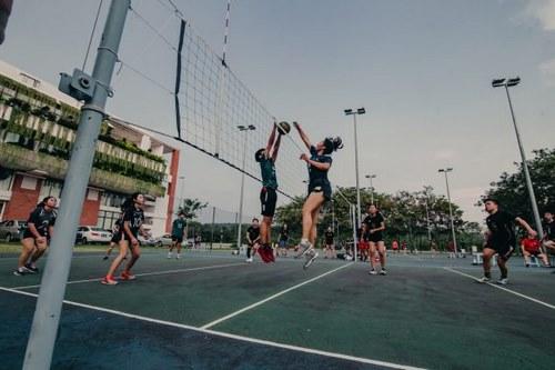 شرط بندی روی والیبال چگونه می باشد ؟