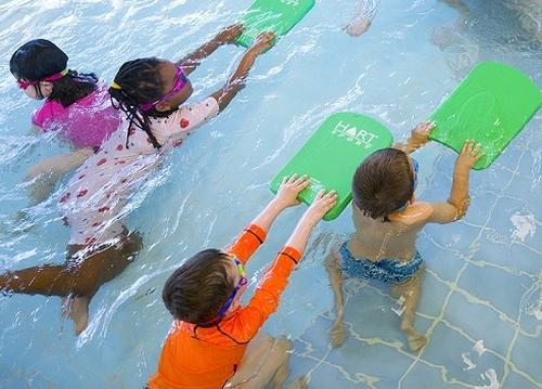 انواع مختلف رشته شنا